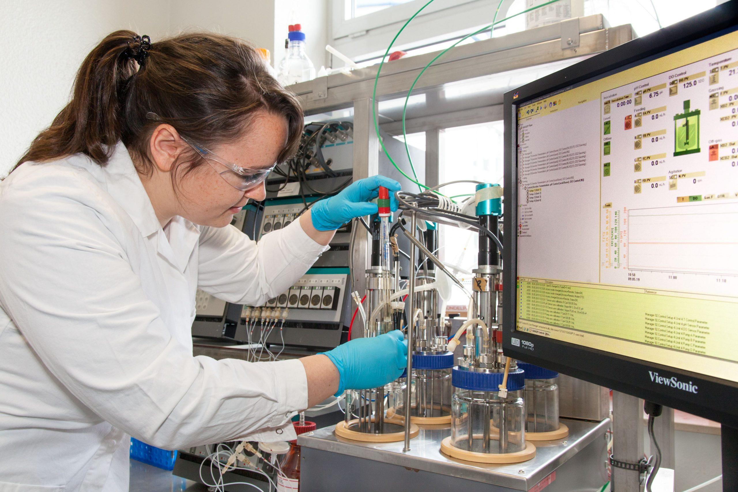 Untersuchung an einem Bioreaktor.
